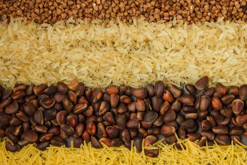 Kolaż różnorodni posiłków tła obrazy royalty free