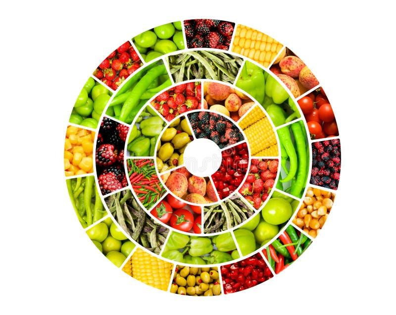 Kolaż wiele owoc i warzywo royalty ilustracja