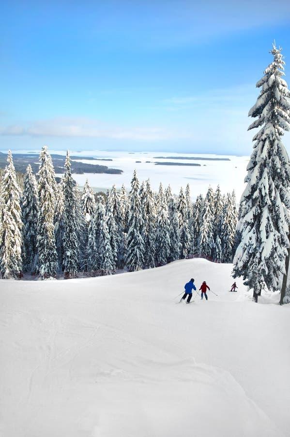 Kola park narodowy Finlandia w zimy Kolin kansallispuisto zdjęcia royalty free