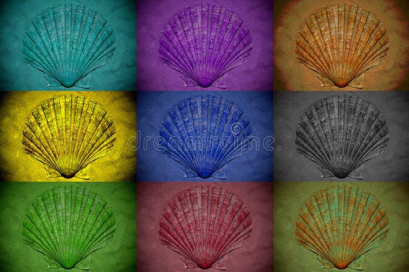 Kola? seashells taktowa? z r??nymi kolor?w filtrami fotografia stock