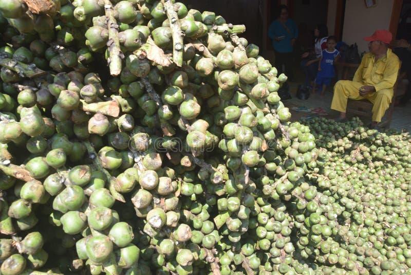 Kolang för Takjil fruktproduktion som framåt kaling den eftersökta idagen ramadan royaltyfri foto