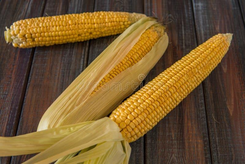 kolby kukurydzy fotografujący tła white Słodka kukurudza na stole zdjęcia stock