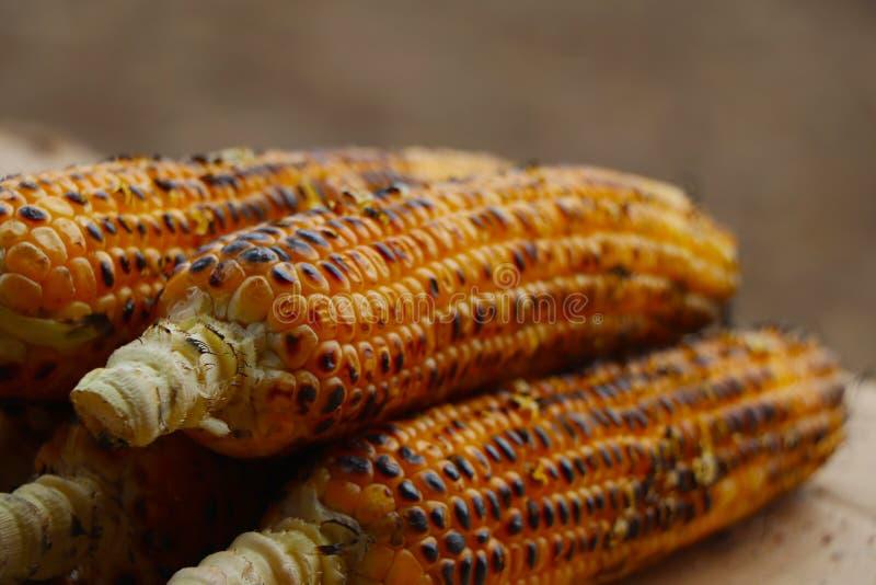 kolby kukurydzy palone obraz stock