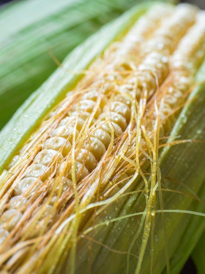 kolby kukurydzy słodkiej Żółta kukurudza, zieleń liście zbliżenie fotografia stock