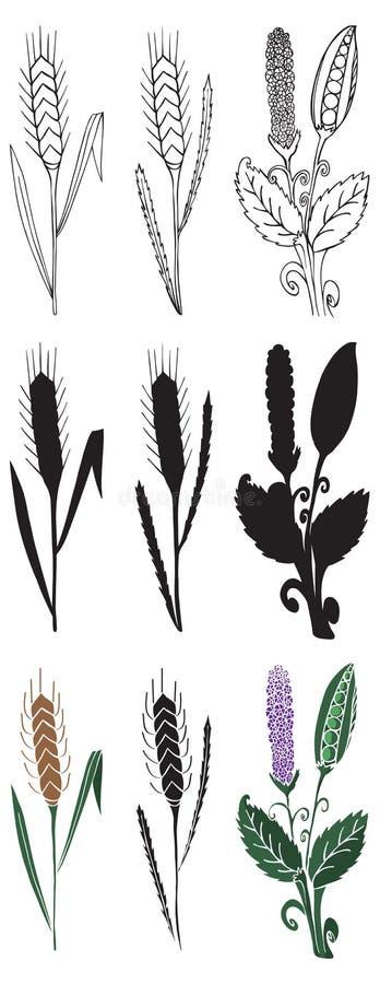 Kolca i grochu ilustracja ilustracja wektor
