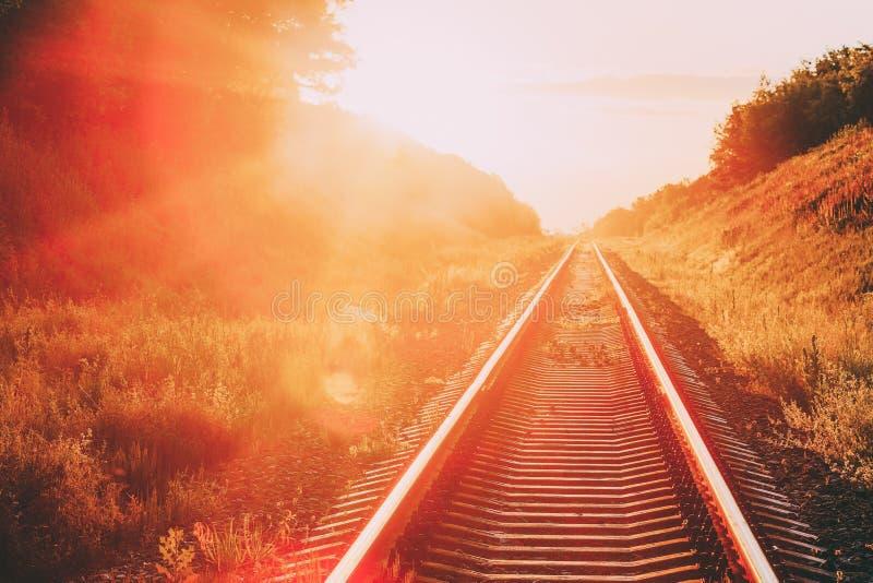 Kolej Iść Prosto Naprzód Przez lato Górkowatej łąki zmierzchu wschód słońca W świetle słonecznym Lense raca zdjęcie stock