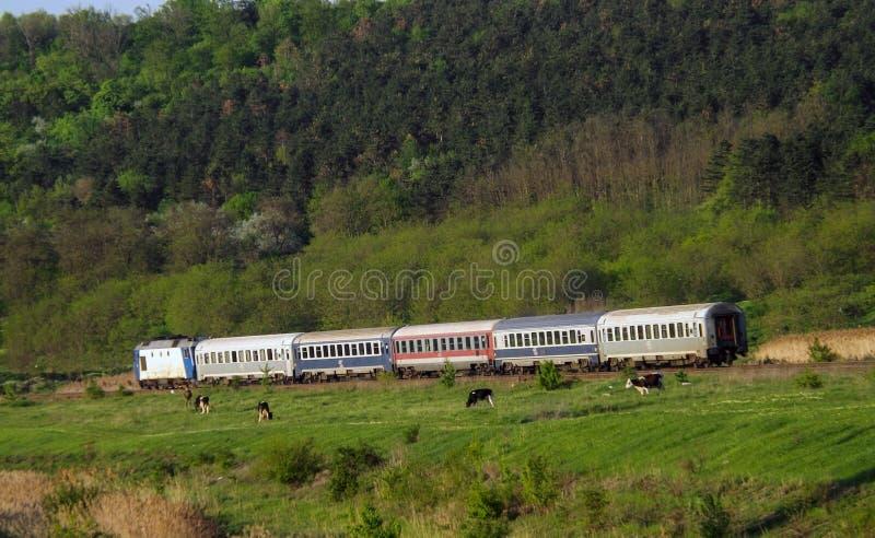 Kolej krajobraz od Rumunia zdjęcie stock