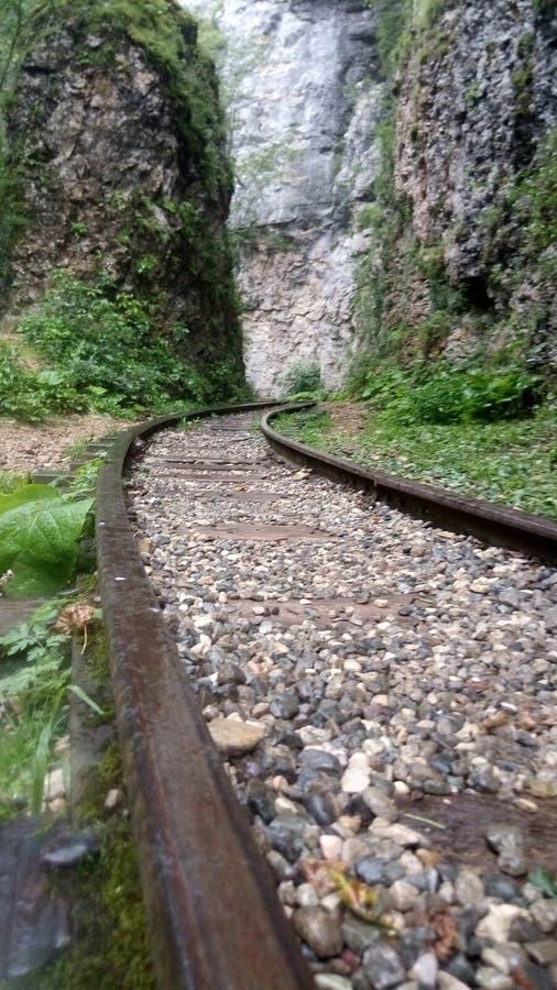 Kolej zawijająca na ścieżkę w wąwozach Guamki na Północnym Kaukazie obrazy royalty free