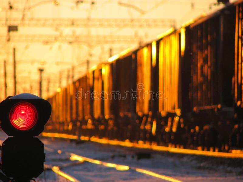 Kolejowy światła ruchu pokazuje błękita sygnał na kolei i kolej z pociągiem towarowym jako tło zdjęcie royalty free