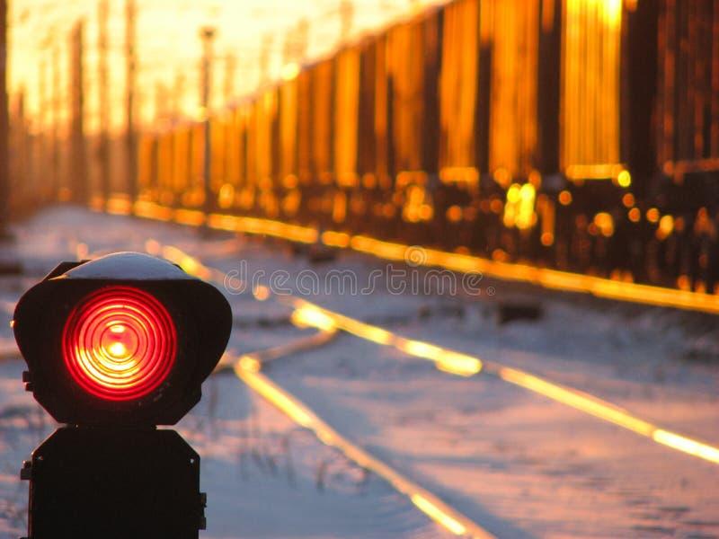 Kolejowy światła ruchu pokazuje błękita sygnał na kolei i kolej z pociągiem towarowym jako tło zdjęcia royalty free