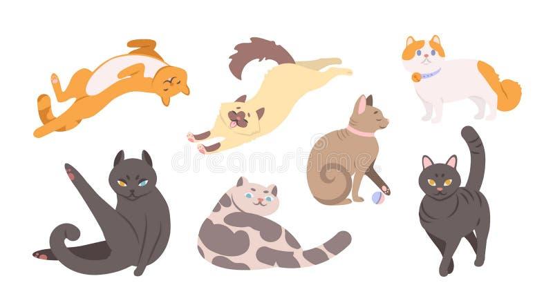 Kolekcja śmieszni koty różnorodni trakeny kłama, siedzi, washi ilustracja wektor