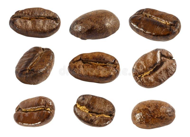 Kolekcja świeże piec kawowe fasole (zakończenie up) (odizolowywa tło) fotografia stock