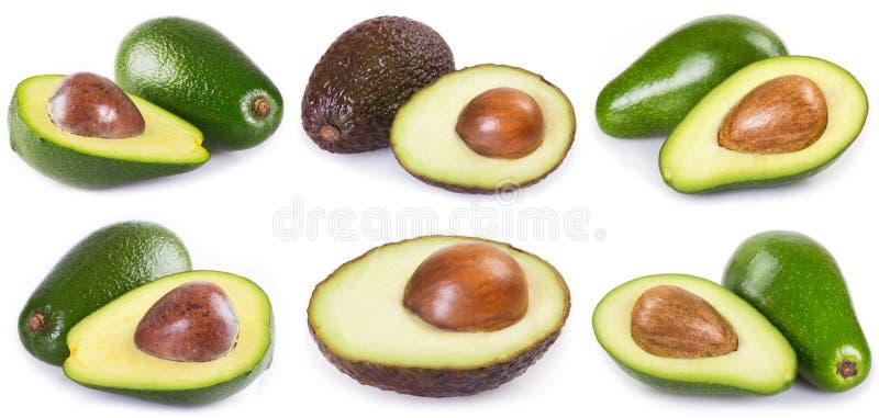 Kolekcja świeży avocado na białym tle zdjęcia royalty free