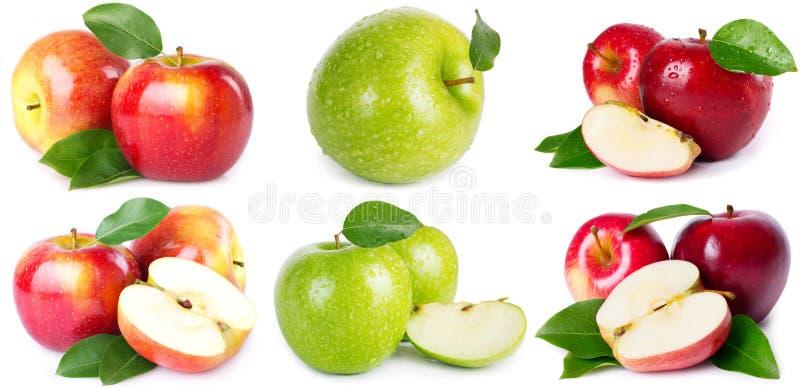 Kolekcja świezi jabłka zdjęcia stock