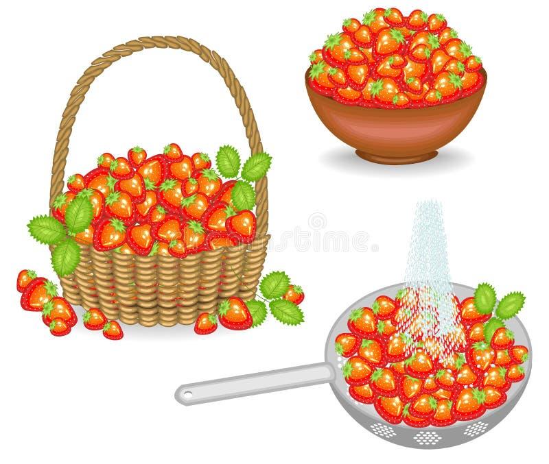Kolekcja Bogaty ?niwo truskawki ?wie?e jagody w koszu, myj?cym pod strumieniem woda, stawiaj?cym w pucharze Owoc jest ilustracji