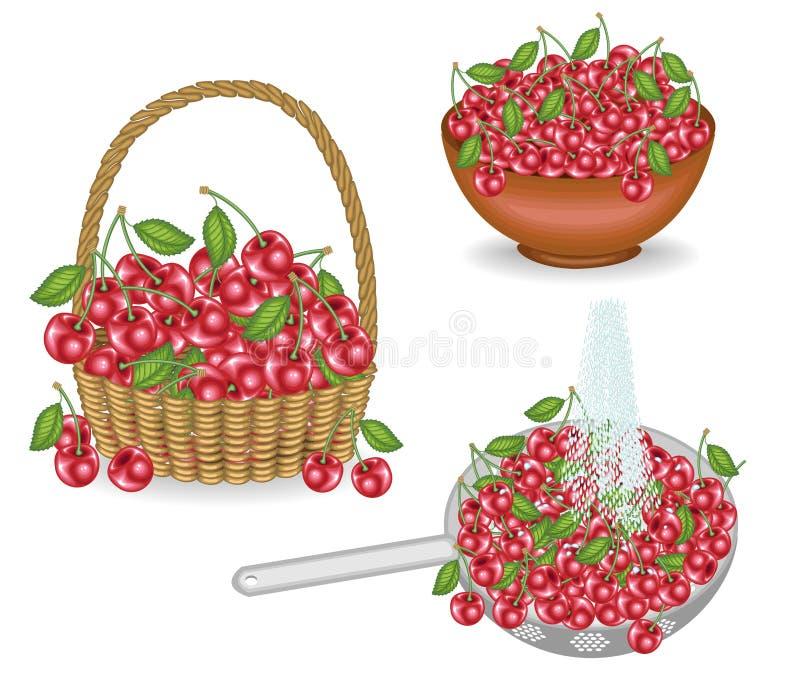 Kolekcja Bogaty żniwo wiśnie Świeże jagody w koszu, myjącym pod strumieniem woda, stawiającym w pucharze Owoc jest ilustracja wektor
