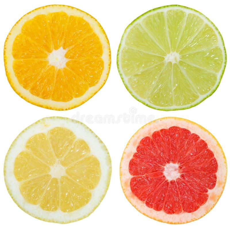 Kolekcja cytrus owoc cytryny pomarańczowi plasterki pokrajać kwadrat jest fotografia royalty free