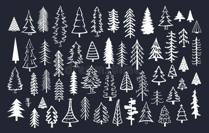 Kolekcja doodle conifer sosnowi jedlinowi drzewa royalty ilustracja