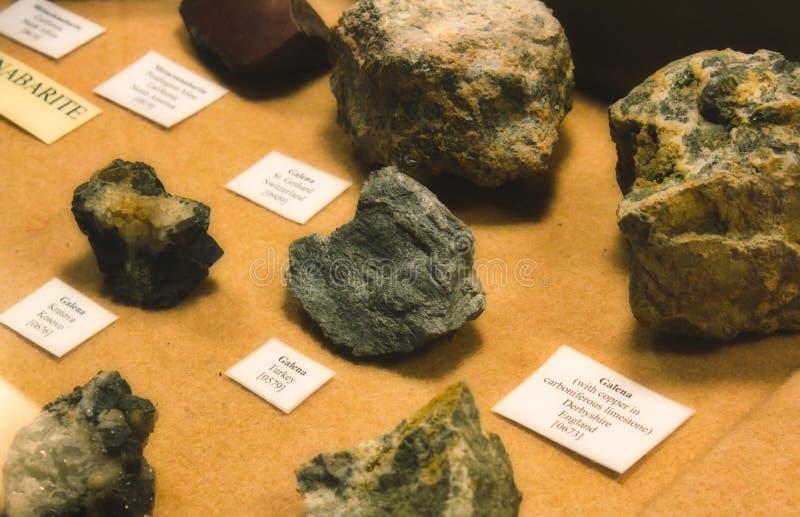 Kolekcja galena kamienie na pokazie jako część geological kopalnego eksponata zdjęcie stock