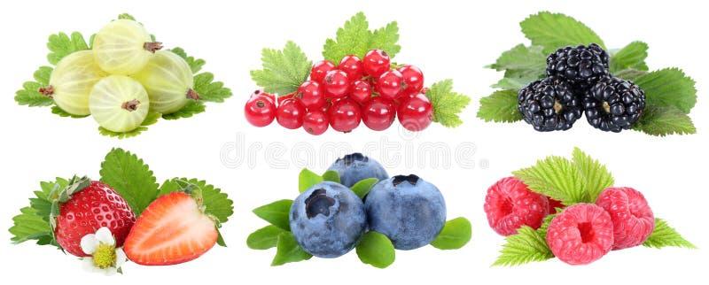 Kolekcja jagod truskawek czarnych jagod jagodowych owoc frui obrazy royalty free