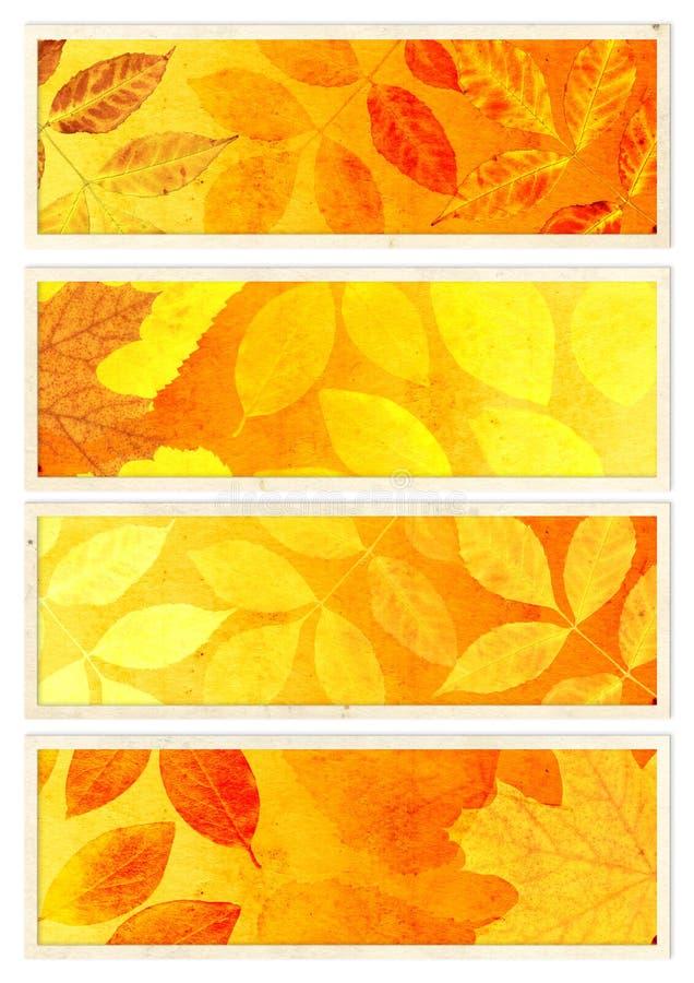Kolekcja jesień sztandary ilustracja wektor