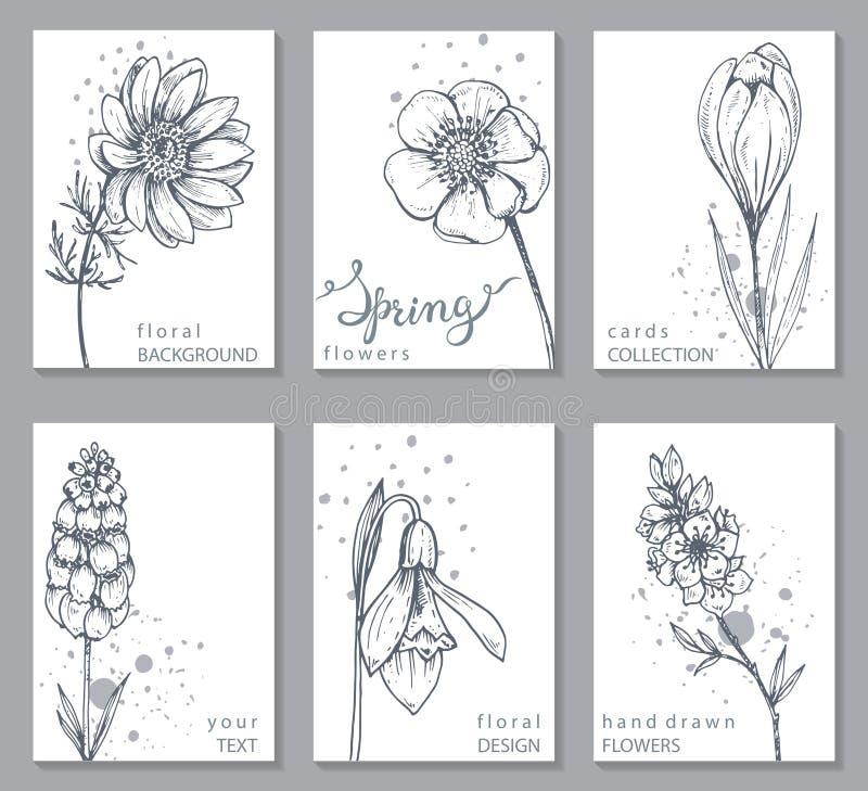 Kolekcja 6 kart z ręka rysującą wiosną kwitnie ilustracja wektor