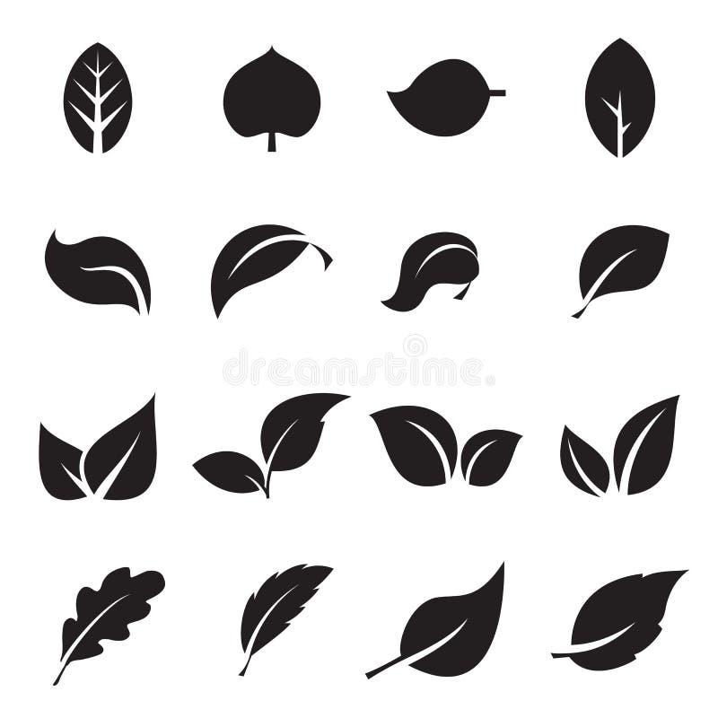 Kolekcja liść ikony Czarne ikony odizolowywać na białym tle ilustracja wektor