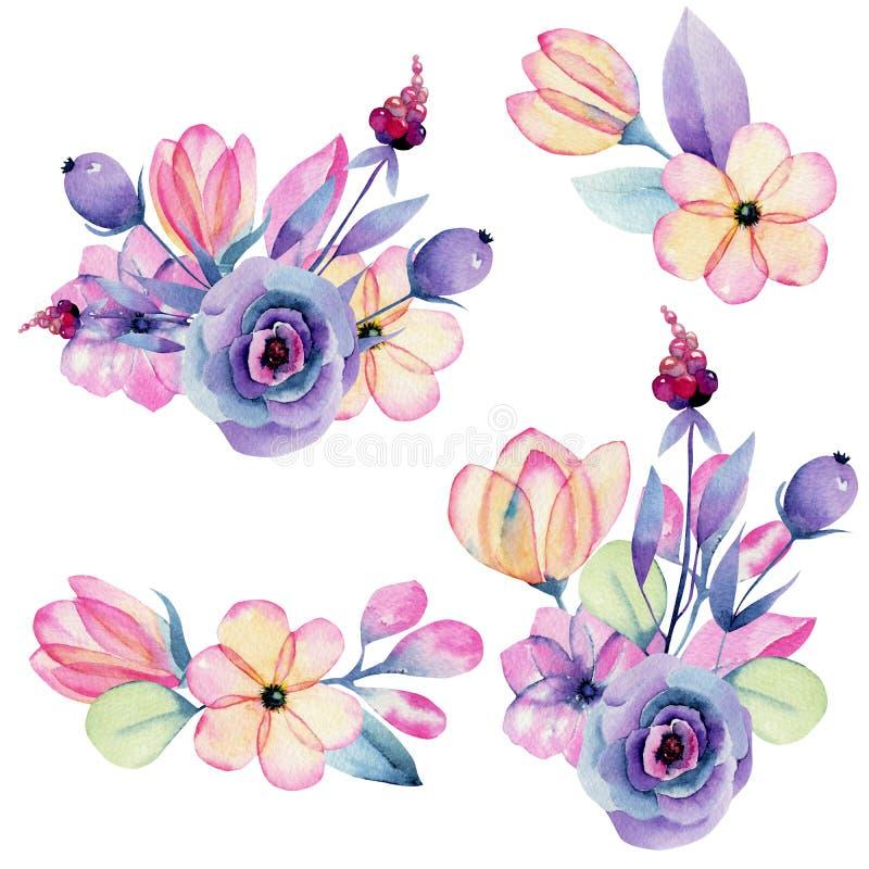 Kolekcja odosobnionej akwareli pastelowy jabłczany okwitnięcie kwitnie bukiety ilustracji