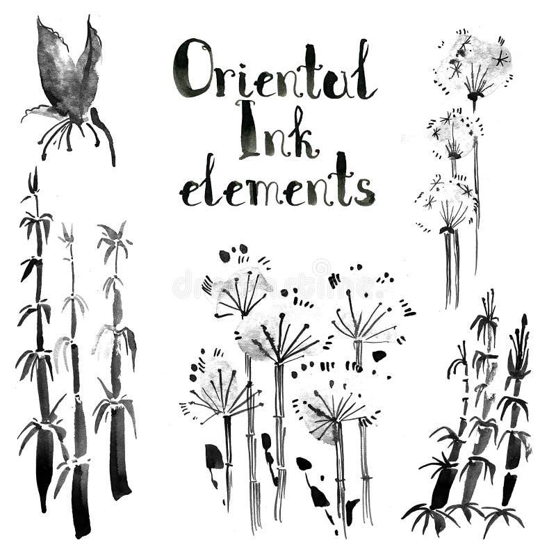 Kolekcja orientalni atramentów elementy: bambus i dandelion Sumi- ilustracja wektor