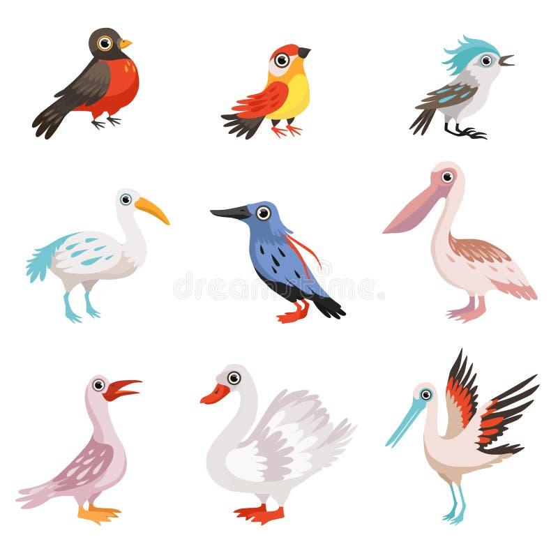 Kolekcja piękni ptaki, żuraw, bocian, łabędź, zimorodek, pelikan, rudzik, finch, błękitnej sójki ptaków wektoru ilustracja ilustracja wektor