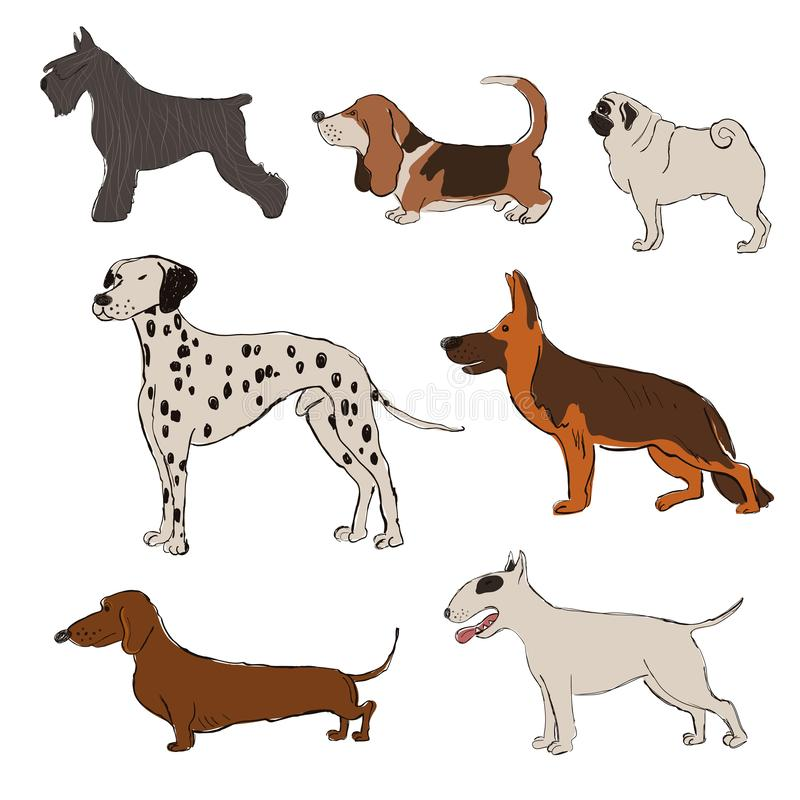 Kolekcja pies Hoduje ikony royalty ilustracja