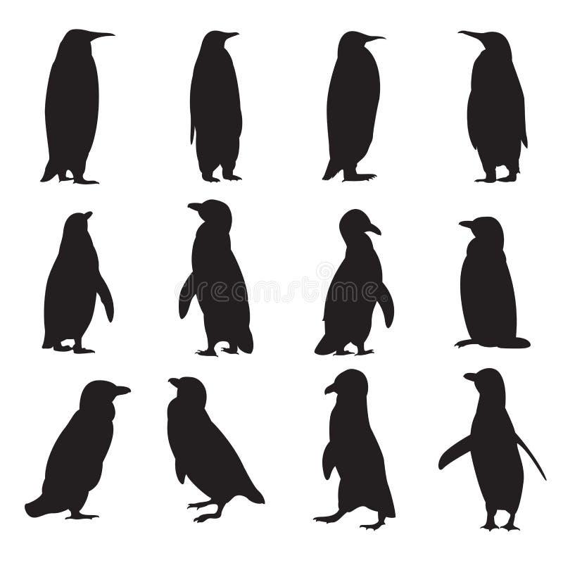 Kolekcja pingwin sylwetki ilustracja wektor