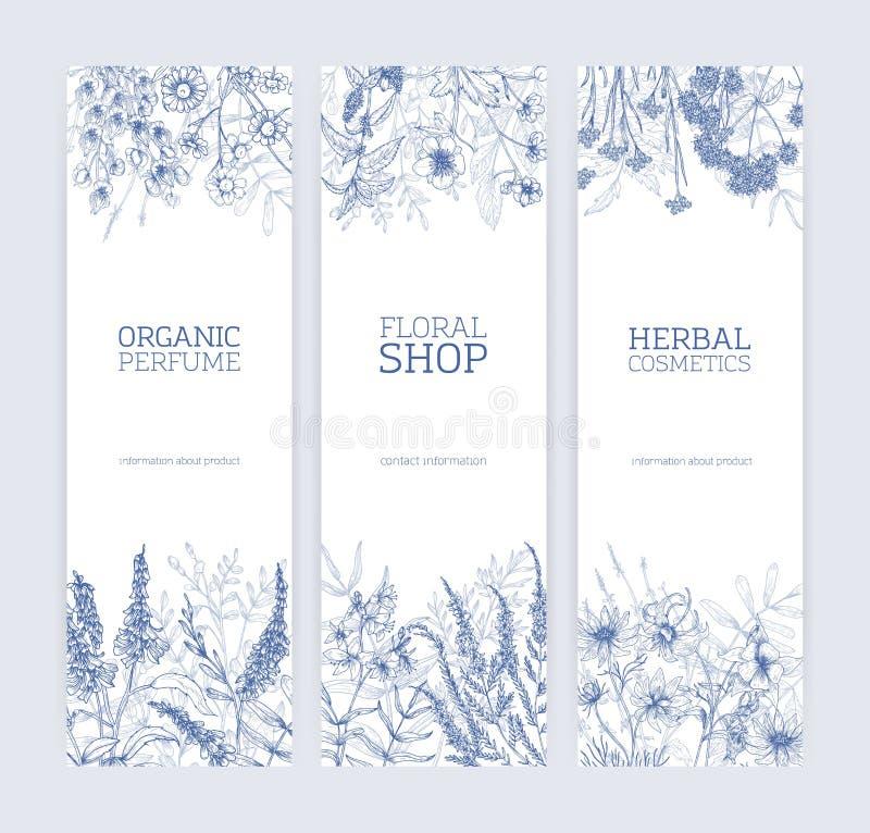 Kolekcja pionowo sztandary dekorujący z dzikimi kwiatami i kwiatonośni łąkowi ziele wręczamy patroszonego z konturowymi liniami d ilustracja wektor