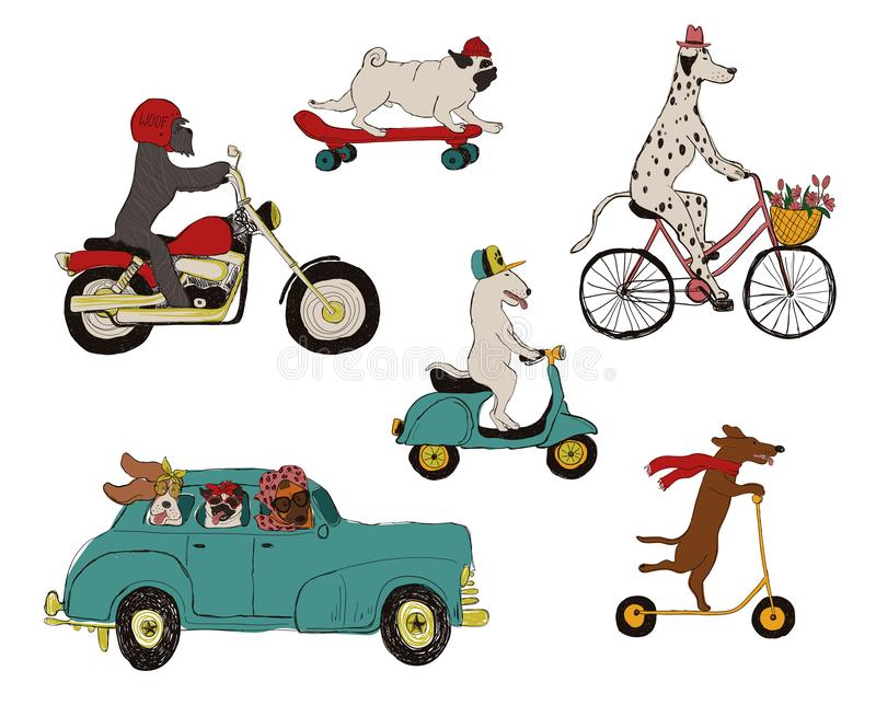 Kolekcja psy Jedzie pojazdy ilustracja wektor
