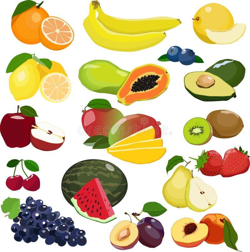 Kolekcja różne owoc odizolowywać na białym tle ilustracja wektor