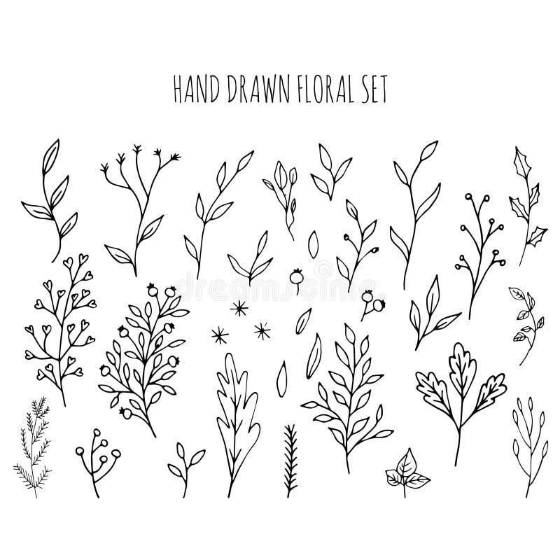 Kolekcja ręka rysujący wektorowy kwiecisty i gałąź z liśćmi royalty ilustracja