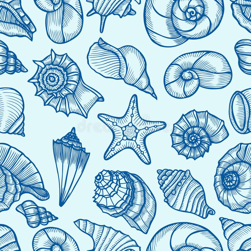 Kolekcja seashells rysujący ilustracja wektor