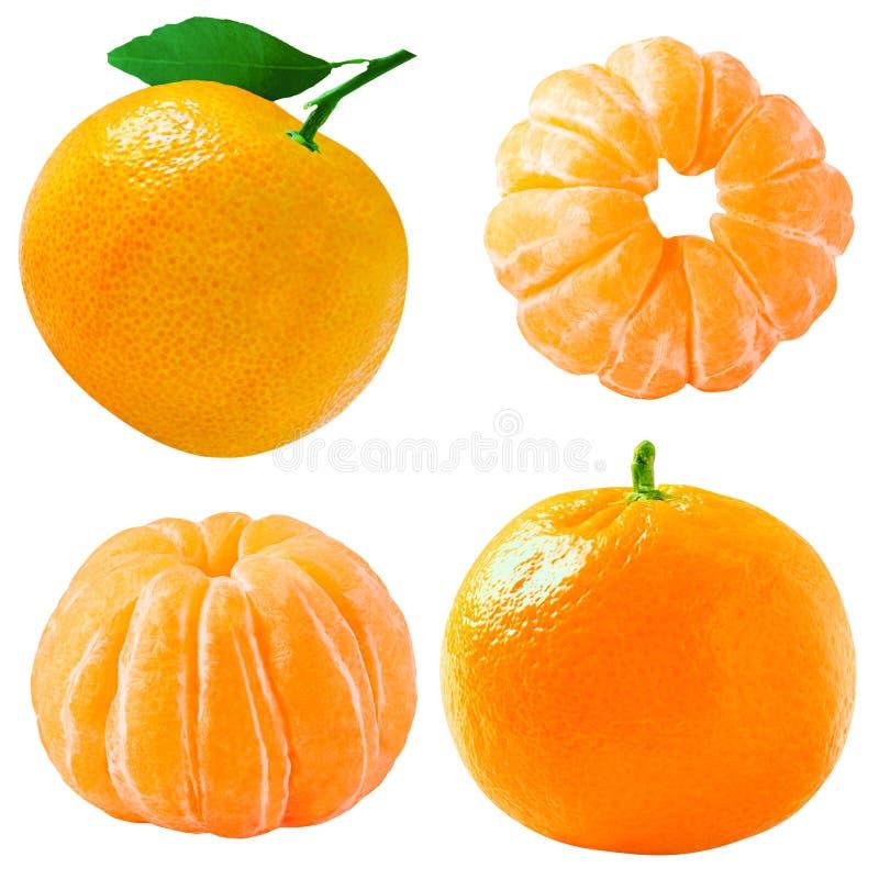 Kolekcja tangerines owoc odizolowywać na bielu obrazy royalty free