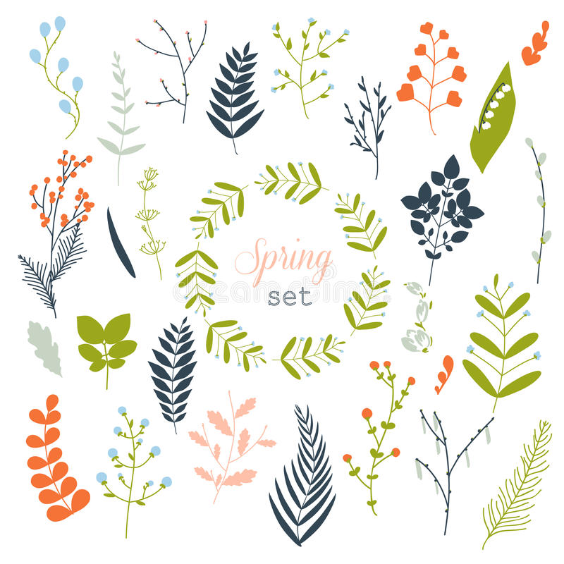 Kolekcja wiosna kwitnie, liście, dandelion, trawa ilustracja wektor