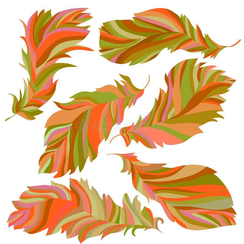 Download Kolekcja złociści piórka ilustracja wektor. Ilustracja złożonej z nowożytny - 65225304