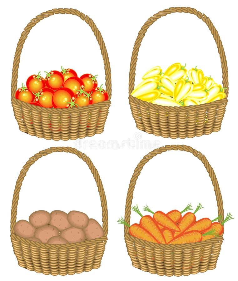 Kolekcja Zbierał bogatego żniwo kosz foluje dojrzali soczyści warzywa Świeże grule, marchewki, pieprze, pomidory, a ilustracja wektor