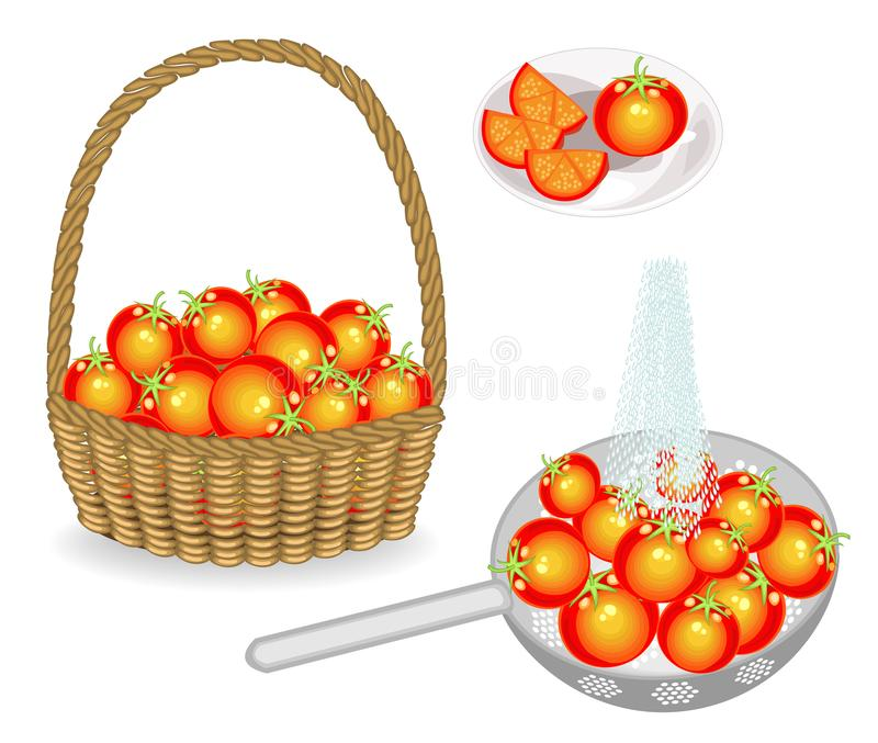 Kolekcja Zbiera pomidoru w koszu Warzywa myj? w colander pod wod? bie??c? Pokraja? na talerzu wektor ilustracja wektor