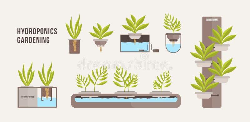 Kolekcja zielone rośliny r w garnkach z kopalnym odżywki rozwiązaniem Plik przekroje poprzeczni hydroponic ilustracji