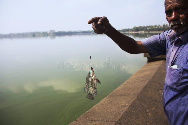 KOLHAPUR, MAHARASHTRA, October 2018, Local fisher man with fish caught up during fishing at Rankala Lake stock photo