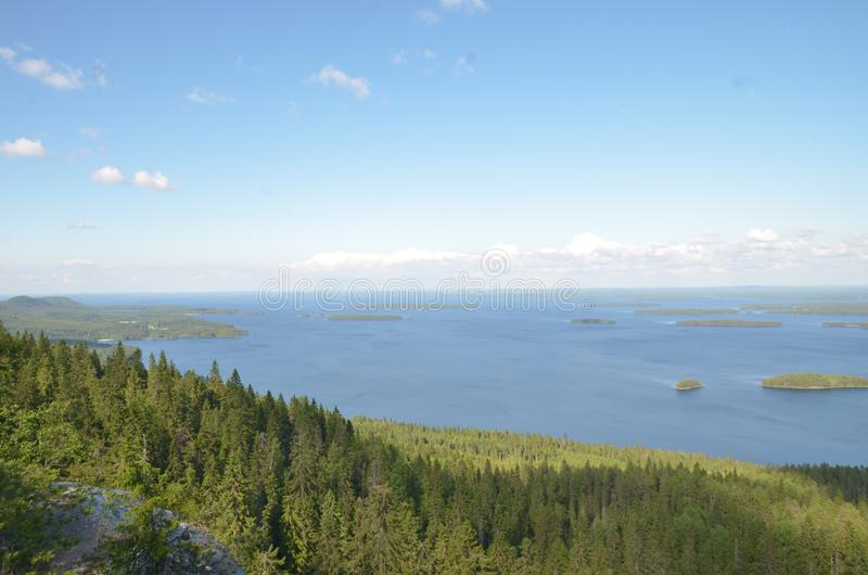 Koli National Park, Finland royalty-vrije stock foto