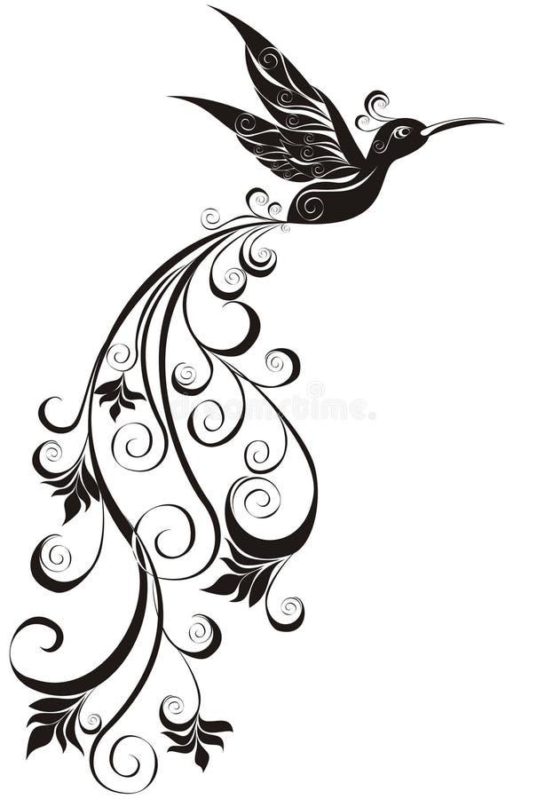 Kolibri lizenzfreie abbildung