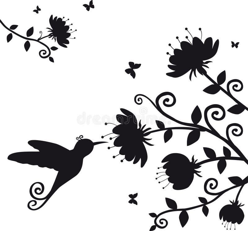 Kolibri ilustração stock