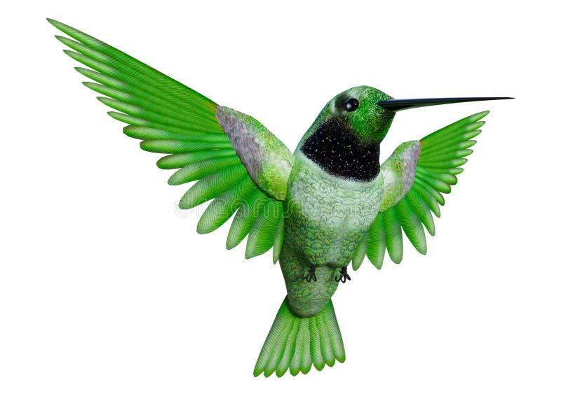 Kolibri der Wiedergabe-3D auf Weiß stockbild