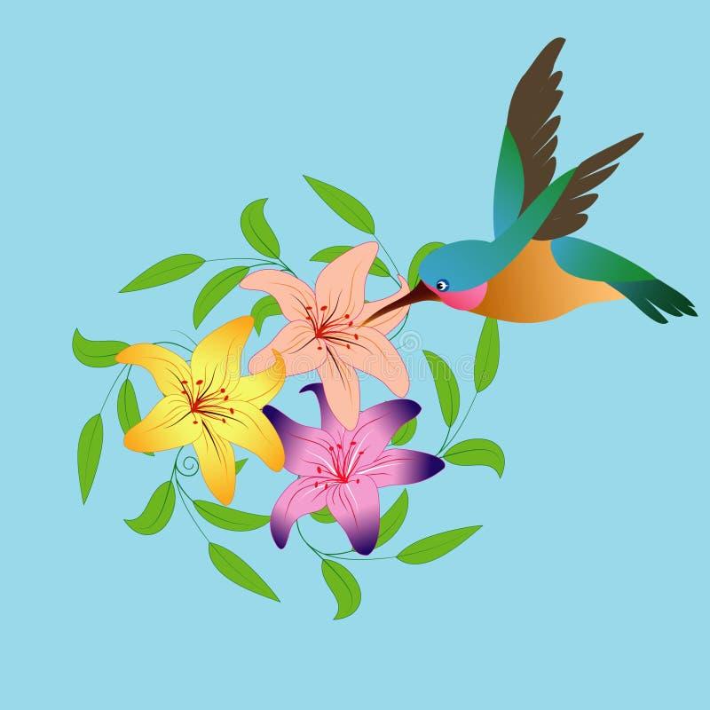 Kolibri und Blumen stockbild
