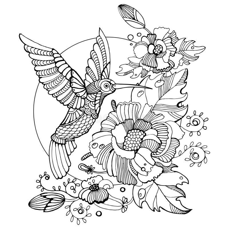 Kolibrifärgläggningbok för vuxen människavektor stock illustrationer